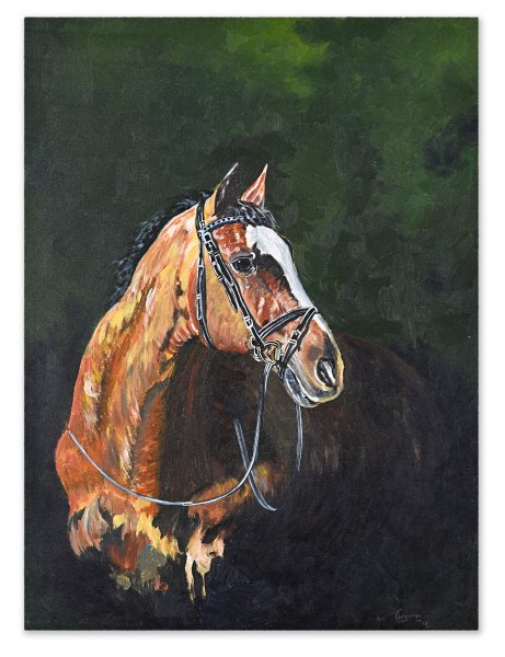 HORSE PAINTING ABSTRACT